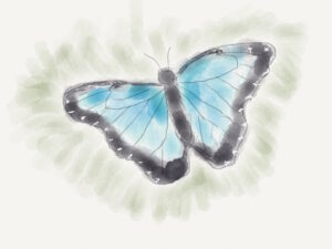 neal_butterfly